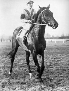 """Nearco (1935–1957) was an Italian bred Thoroughbred racehorse described by Thoroughbred Heritage as """"one of the greatest racehorses of the Twentieth Century"""" and """"one of the most important sires of the century."""" He was not only unbeaten, winning 14 races at distances from 5 furlongs to 1 mile 7 furlongs, but also the patriarch of the most dominant sire line in Thoroughbred history."""