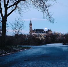 From our friends at Glasgow  @uofglasgow - Beautiful #fridaythe13th pic by @problemplay - nice shot to finish off our first week back at Uni!  #UofGWinter ---------------------- #UofG #UniversityofGlasgow #GlasgowUni #Glasgow #Scotland #College #Campus #UofGlasgow #student #uofgstudent #scholarship #socialmedia #goviewyou