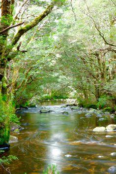 Cradle Mountain, Tasmania hike