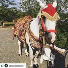 #Repost @sarahjsargent with @repostapp. ・・・ got baraat? ❤️ #indianwedding #baraat #virginiaweddings #weddings #weddingvenue #themarketatgrelen #horse #baraathorse @mikelundfood