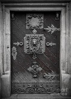 Antique doors I could totally see this as the entrance to the Hogwarts dungeons, just change the emblem.