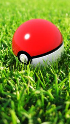 Pokeball In Grass iPhone 6 Wallpaper - http://freebestpicture.com/pokeball-in-grass-iphone-6-wallpaper/