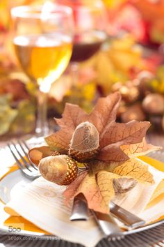 Fall tablevsettings with leaves and pinecones