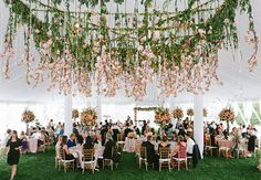 Reception decoration: Hanging Pink Cherry Blossoms