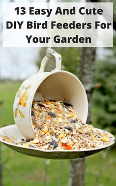 13 Easy And Cute DIY Bird Feeders For Your Garden - Gardenoholic