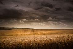 Green County, Wisconsin