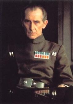 Peter Cushing as Grand Moff Tarkin. George Lucas killed this character off way too early. Cushing played this ruthless officer to a T. It's also ironic that Cushing's bone structure and sunken cheeks bear a striking resemblance to the helmet of the later character Boba Fett.