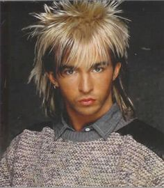 Limahl .. I thought he had the most beautiful hair ever