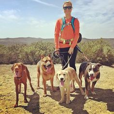 Sunday hike with today's #dogpack :)