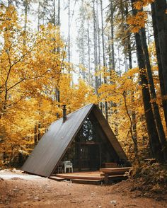 Golden leaves of autumn over an A-frame cabin in Skykomish, Washington.
