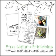 Free Nature Printables for toddlers and preschoolers @preschoolersandpeace