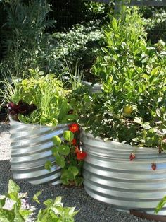 22 Fabulous Container Garden Design Ideas for Beautiful Balconies and Backyard Landscaping