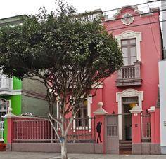 Lima Hostel: Book Hostels in Lima on hostelbookers Lima Peru, Hostel, South America, Link, Plants, Plant, Planets