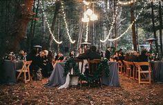 THE WOODS  Repost via @festivalbrides  @braillegold  #reception #thewoods #festoons #setsthemood #weddingday #inspiration #dressmywedding #weddinghire #eventhire #geelong #surfcoast #bellarinepeninsula #surroudingareas by dress_my_wedding http://ift.tt/1JO3Y6G