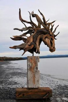 27 ideas wood sculpture horse driftwood art for 2019 Driftwood Sculpture, Horse Sculpture, Driftwood Art, Art Sculptures, Driftwood Seahorse, Wooden Sculptures, Rock Sculpture, Driftwood Beach, Beach Wood