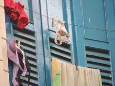 Oswaldo Martins: janela sobre a lapa
