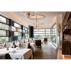 Olivia All Modern, Modern Interior, Armchair, Table Settings, Dining Room, Furniture, Home Decor, Sofa Chair, Dinner Room
