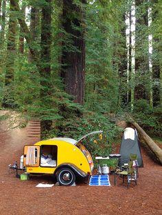 Tiny Yellow Teardrop: Tall Trees & Tiny Trailers: International Redwood Gathering