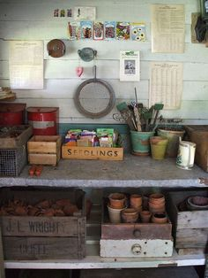 Potting shed interior design design Allotment Shed, Greenhouse Shed, Window Greenhouse, Small Greenhouse, Shed Organization, Shed Storage, Tool Storage, Garden Shed Interiors, Garden Sheds