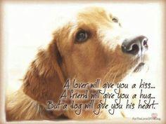 A dog is a mans best friend