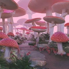 Mushroom Forest Art Print by Nekema - X-Small Nature Aesthetic, Aesthetic Photo, Pink Aesthetic, Aesthetic Pictures, Photo Wall Collage, Picture Wall, Images Esthétiques, Photocollage, Psychedelic Art