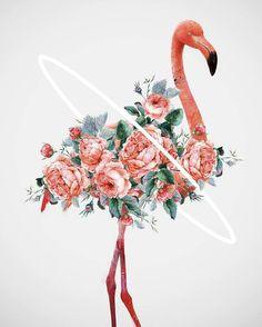 Flowery Birds Illustrations – Fubiz Media