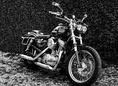Harley-Davidson Sporster Hugger 883
