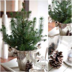 Christmas 2012 / Joulu 2012