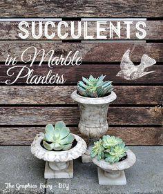 DIY - Plant Succulents in Vintage Marble Planters! http://thegraphicsfairy.com/diy-plant-succulents-in-vintage-marble-planters/