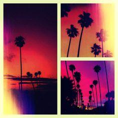 Tree????#PicsArt .
