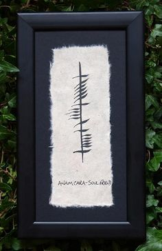 My best friend and I are going to get this tattooed on our right shoulders!  Anam cara is soul friend in Ogham.  -Kym