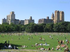 Sheep Meadow in Central Park, NYC.  Good place for suntan.