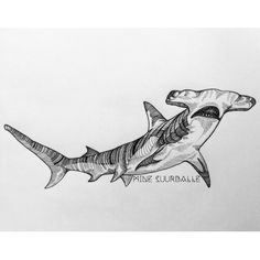 Cool Shark Drawing Drawing In 2019 Pinterest Shark Tattoos