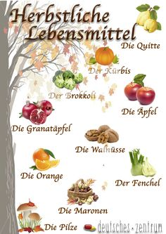 Herbst Deutsch Deutsch Wortschatz Grammatik German DAF Vocabulario Alemán