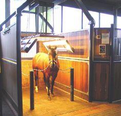 Ständer für Pferdesolarium