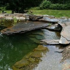 Natural Swimming Pool.