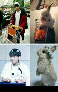 Bts Jungkook is a bunny Foto Jungkook, Jungkook Lindo, Jungkook Cute, Kookie Bts, Foto Bts, Bts Photo, Bts Bangtan Boy, K Pop, Bts Pictures