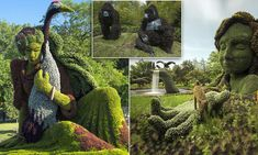 Edward Scissorhands eat your heart out! Topiary experts show why they are a cut above with incredible hedge sculptures of beautiful women, gorillas and lemurs
