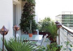 plants makes a beautiful balcony