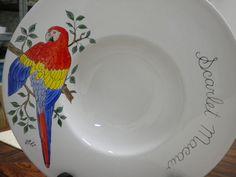 Prato passaro Macaw