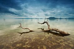 Los mejores paisajes del mundo (Parte 1) by Arbebuk | Banco de Imágenes Gratis .COM (shared via SlingPic)