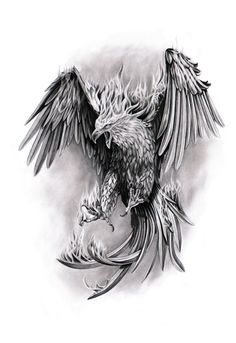 a phenix tattoo design. Tattoo Dragon And Phoenix, Phoenix Bird Tattoos, Phoenix Tattoo Design, Dragon Head Tattoo, Rising Phoenix Tattoo, Phoenix Design, Trendy Tattoos, Tattoos For Guys, Cool Tattoos