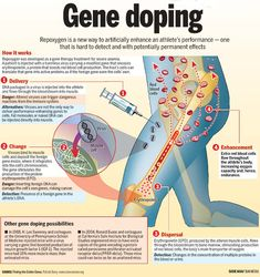 Gene doping in cycling: Banned, but used? Gene Therapy, Sports Medicine, The Cell, Genetics, Infographic, It Works, Posts, Number, Dark Side