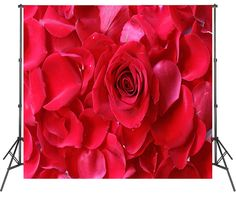 Big Flowers Photography Backdrops Red Rose Photoshoot Backdrops Vinyl Polyester Video Photo Booth Background For Photography, Photography Backdrops, Christmas Backdrops, Baby Shower Photos, Vinyl Backdrops, Photo Processing, New Backgrounds, Shot Photo, Ceremony Backdrop