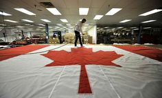 Carol-Ann Jordan carefully blows off dirt and other unwanted items from a giant flag at Flags Unlimited in Barrie. Canadian Flags, Carol Ann, Blow Off, National Symbols, News Stories, Great Photos, Celebrities, Celebs, Celebrity