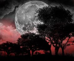 full moon. This is so beautiful !!!