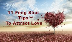 One of the most popular reasons people use Feng Shui is to either bring in love or spice up their romantic relationships.