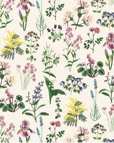 Room Wallpaper, Fabric Wallpaper, Pattern Wallpaper, Leaf Illustration, Floral Illustrations, Pretty Patterns, Flower Patterns, Flora Pattern, Planners