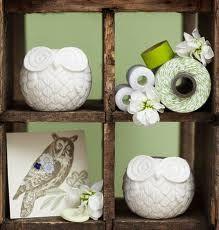 Owl Shelves