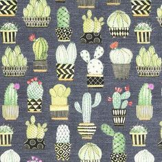 Michael Miller House Designer - Lovely Llamas - Cactus Hoedown in Gray